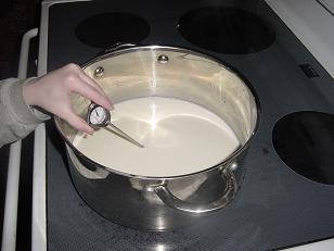yogurt1sm.JPG