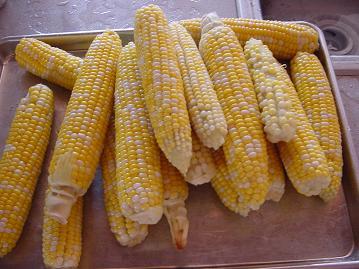 corn2sm.JPG