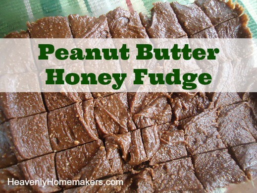 Peanut Butter Honey Fudge