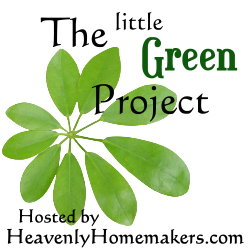 littlegreenproject.jpg