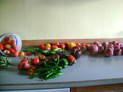 gardenproducesept09sm