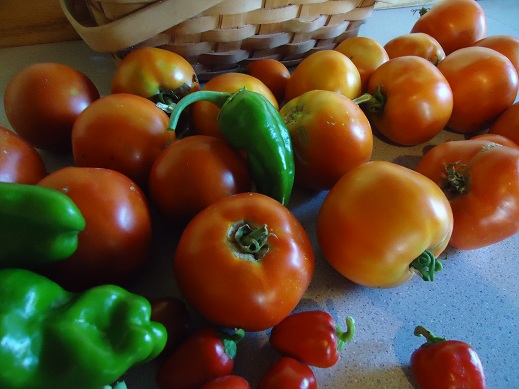 The Story of My Mom's Salsa (and Why I Can't Share My Salsa Recipe ...