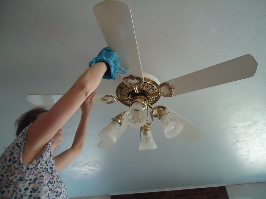 Clean your ceiling fans heavenly homemakers as aloadofball Gallery
