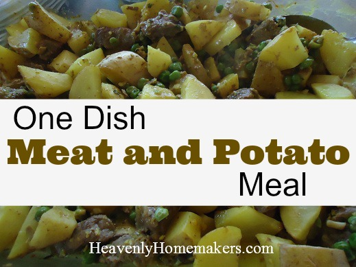 One Dish Meat and Potato Meal