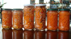 Fermented Food Recipes Immune System