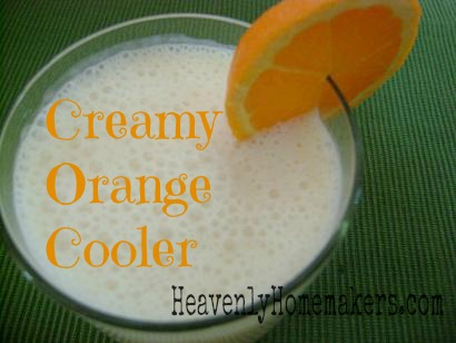 Creamy Orange Cooler