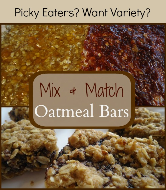 Mix and Match Oatmeal Bars