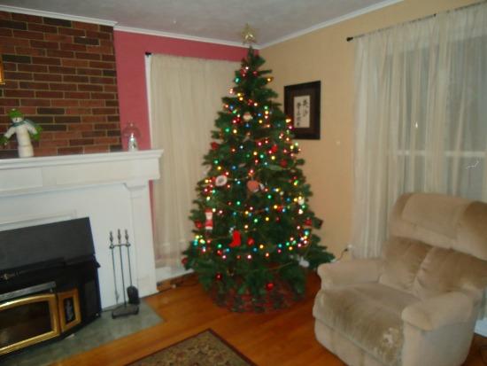 christmas tree 20132