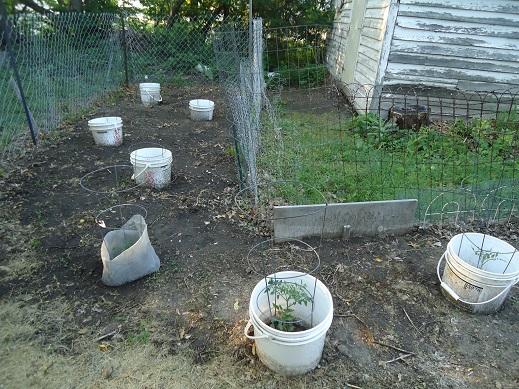 garden148