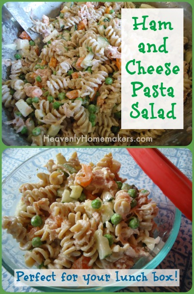 Ham and Cheese Pasta Salad Lunch