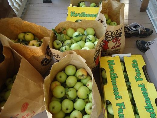 apple time 2