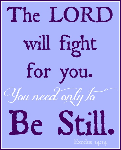 Be Still, The Lord Will Fight For You!
