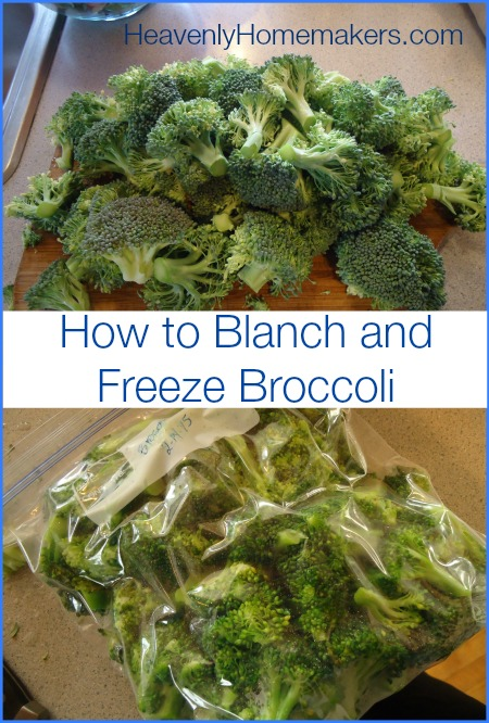 How to Blanch and Freeze Broccoli