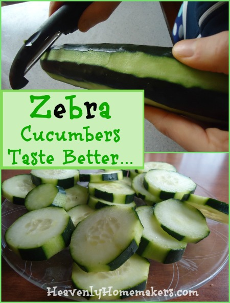Zebra Cucumbers Taste Better
