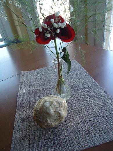 jicima and rose