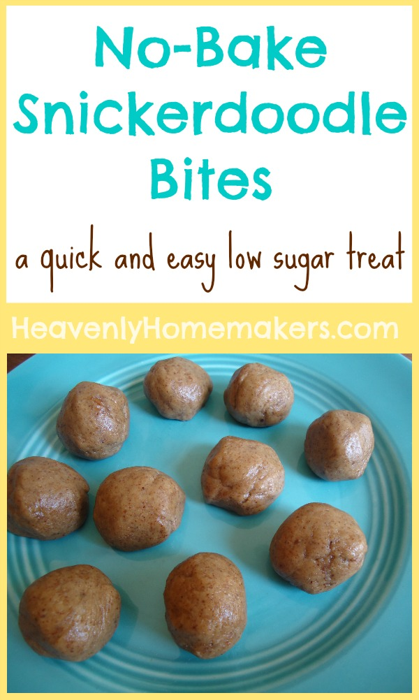 No-Bake Snickerdoodle Bites - a quick and easy low sugar treat