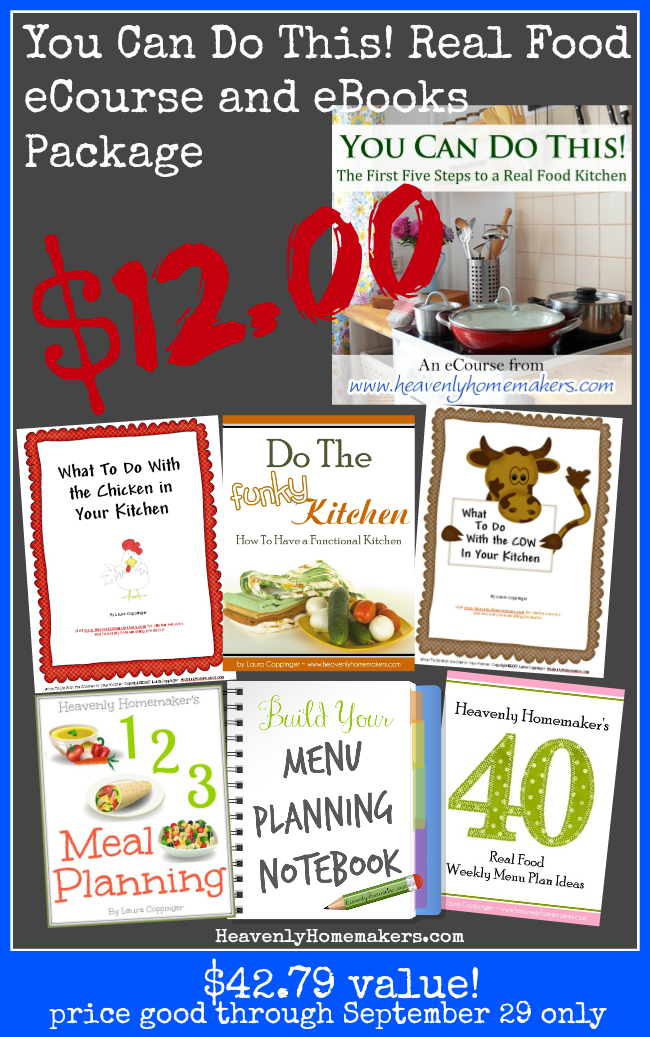 You Can Do This Real Food eCourse and eBook package