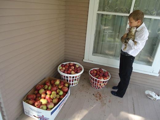 apples wiggams and malachi