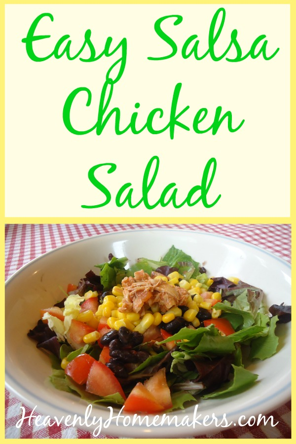 Easy Salsa Chicken Salad