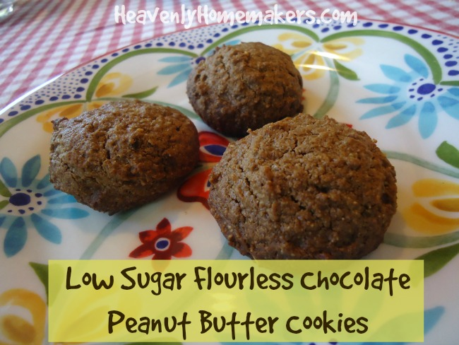 Low Sugar Flourless Chocolate Peanut Butter Cookies