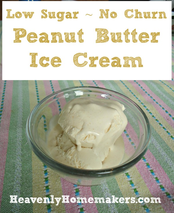 Low Sugar No Churn Peanut Butter Ice Cream