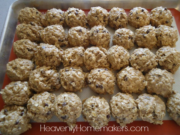 Freezer Breakfast Cookies1