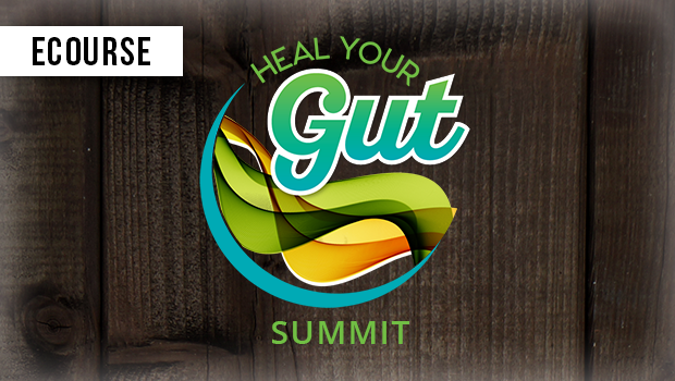 heal-your-gut-summit_2x