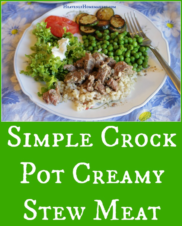 Simple Crock Pot Creamy Stew Meat