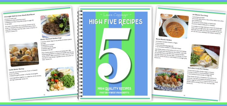 High five recipes 111 recipes that use 5 or fewer ingredients recipe turns out delicious and fun is basically icing on the cake wait a five ingredient cake can it be true i guess youll have to get the book forumfinder Images
