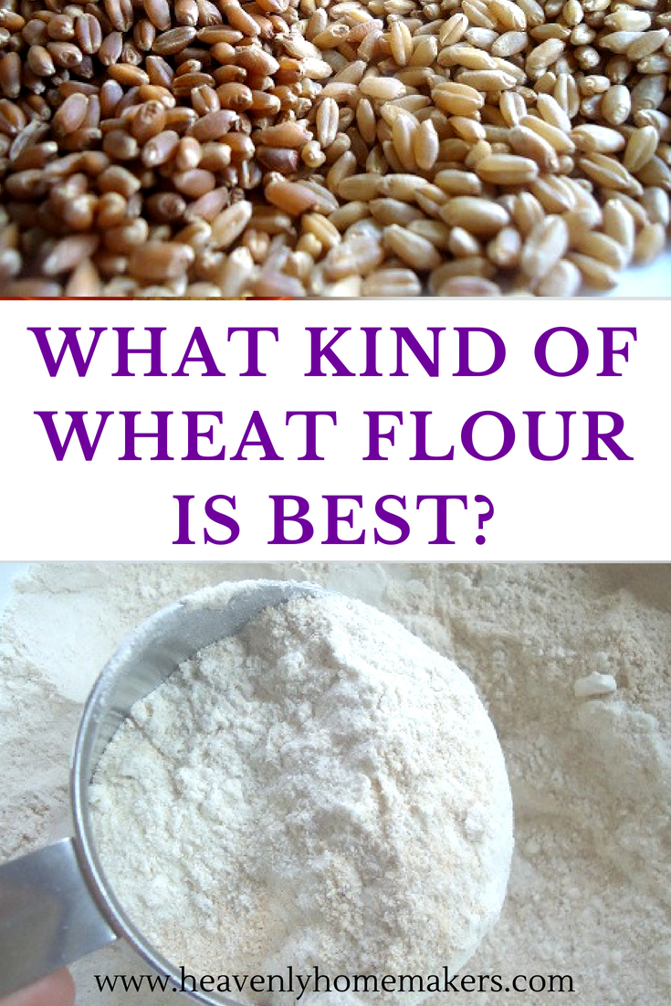 What kind of wheat flour is best? Find out in this post! #wheat #wheatflour
