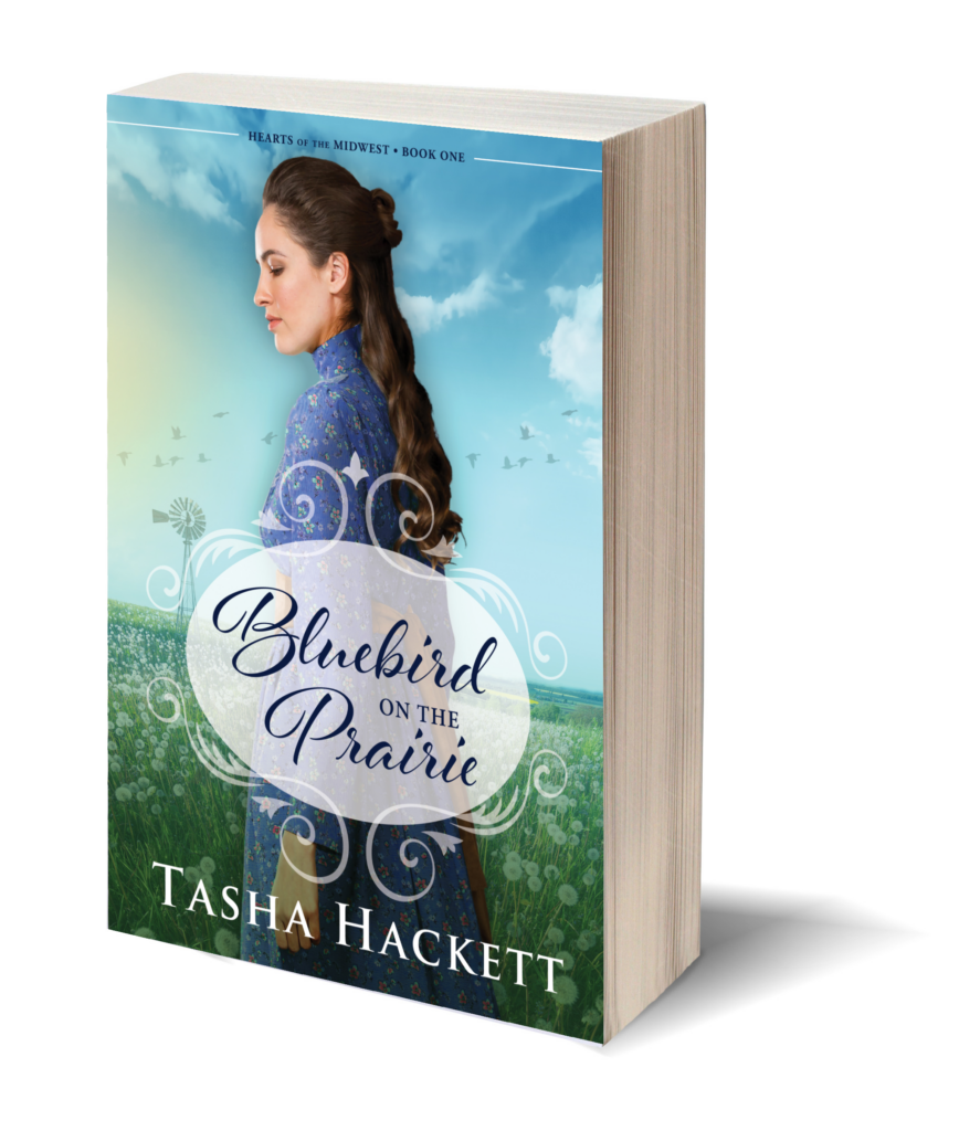 book cover of bluebird on the prairie